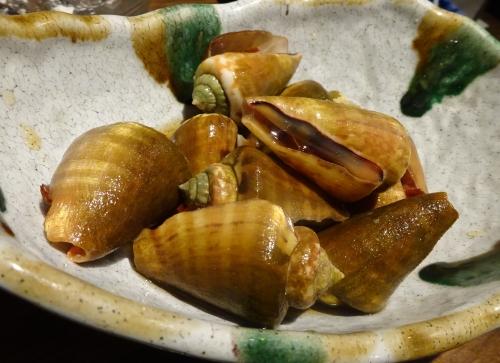 20チャンバラ貝