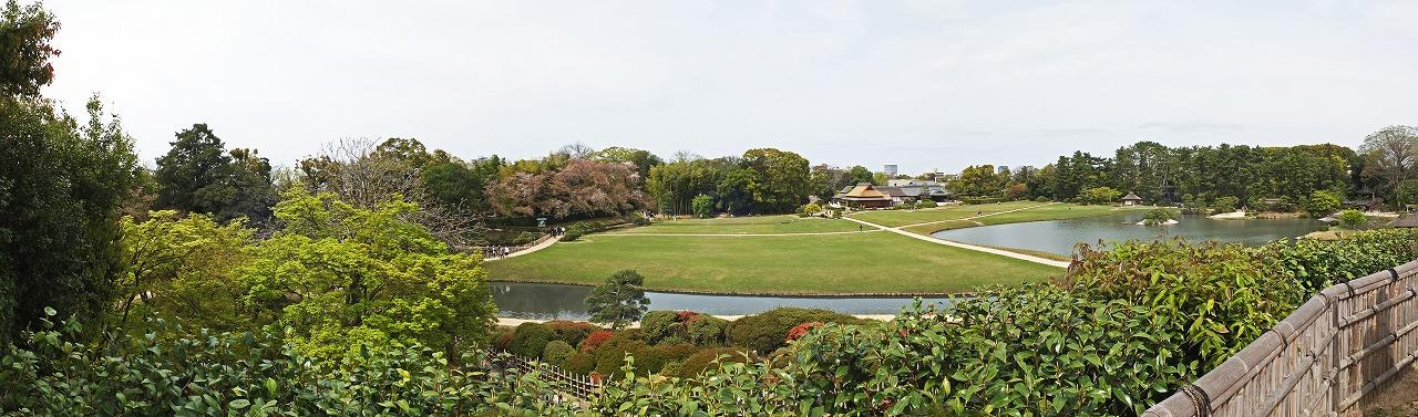 s-20150412 後楽園唯心山頂上から眺めた楓の新緑と緑芝の今日のワイド風景 (1)