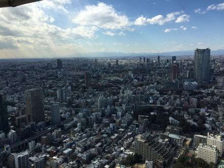 東京タワー富士山