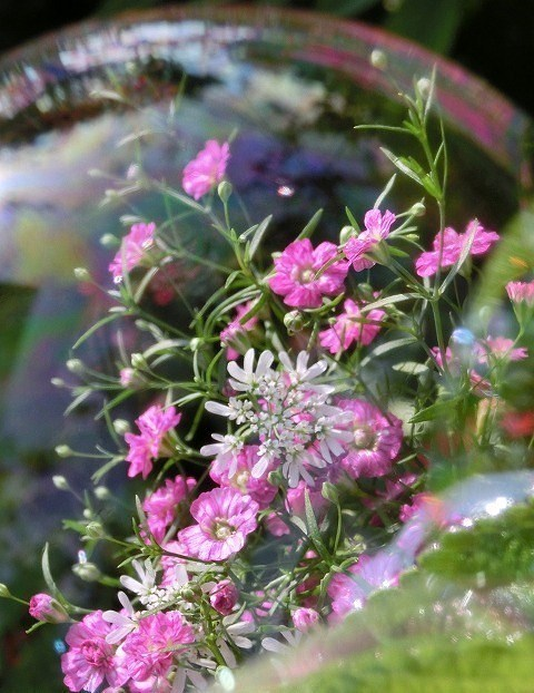 シャボン玉と小さな花束