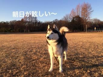IMG_1620_Fotor.jpg
