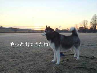 IMG_1626_Fotor.jpg