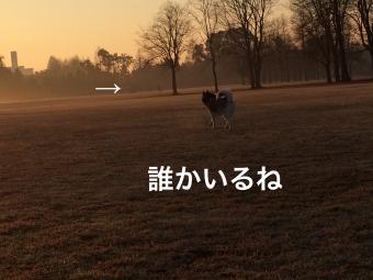 IMG_1699_Fotor.jpg