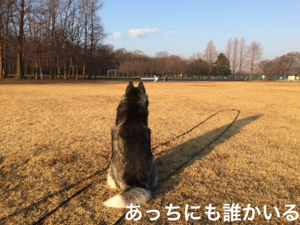 IMG_1700_Fotor.jpg