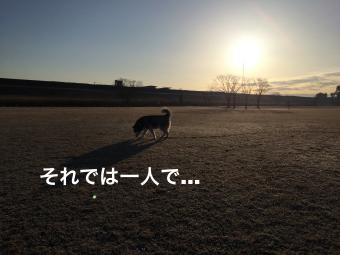 IMG_1762_Fotor.jpg