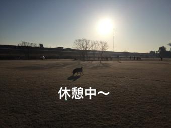 IMG_1791_Fotor.jpg