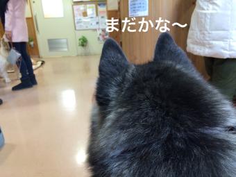 IMG_1794_Fotor.jpg