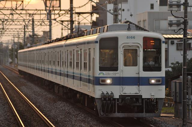 141011yamate (31)