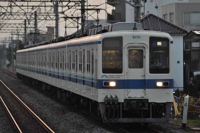141011yamate (33)