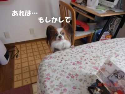 009_convert_20150120112432.jpg