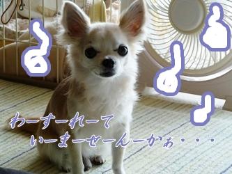 ブログ用057-2015 05 20-133139