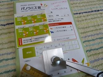 ブログ用001-2015 05 30-105132