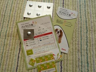 ブログ用009-2015 05 21-094157