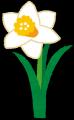 flower_suisen[1]