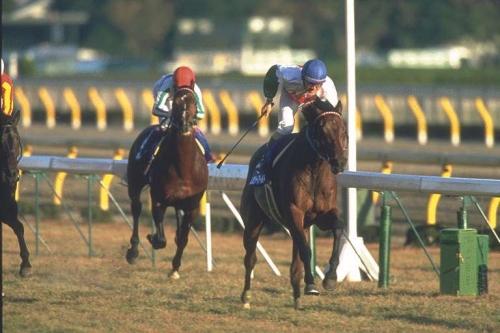 【競馬】レガシーワールドって名前、超カッコいいよね