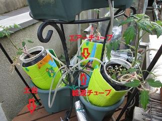3・30二段式栽培器②