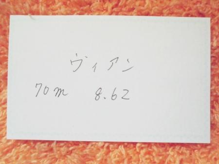 29733.jpg