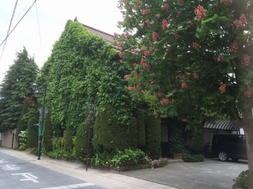 2015-05-12緑に囲まれたレストラン