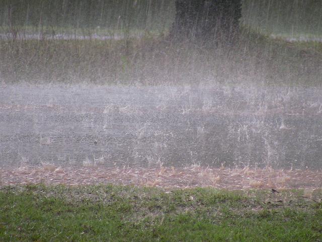 滝のような大雨 by占いとか魔術とか所蔵画像