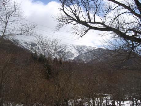 tairappyoyama06.jpg