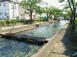 曳舟親水公園2