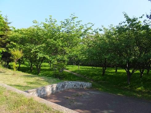祝津臨海公園5