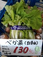 20150611 べが菜の本物