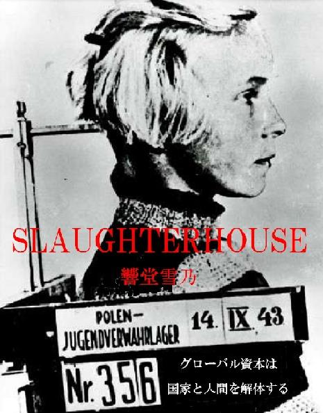 slaughterhouse (s)