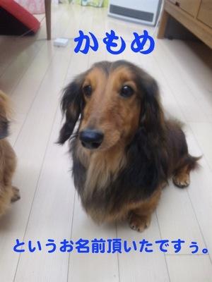 100422_201134