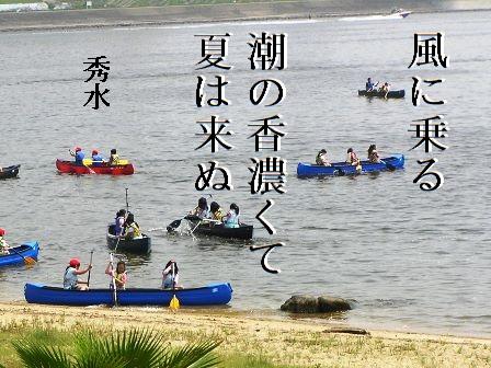natsuwakinu.jpg