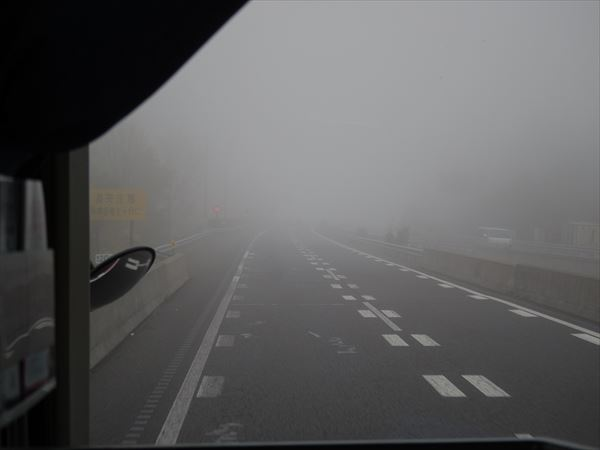 なんじゃこの霧は