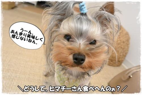 DSC_4208 0412