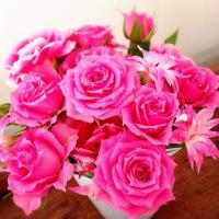 fc2blog_201504211434463f0.jpg