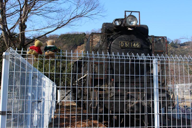 城北公園 D51 146 を柵の上で見る 20150211