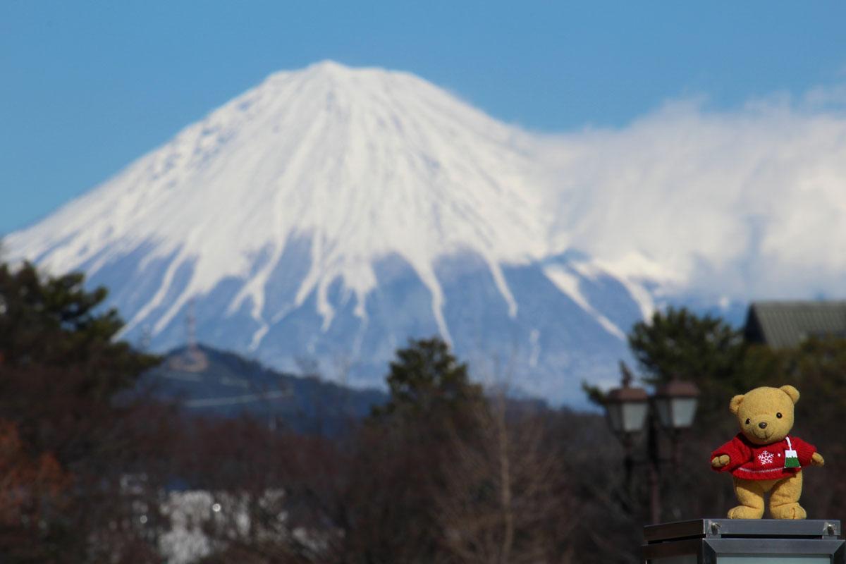 富士山と 駿府城公園富士見芝生広場付近から