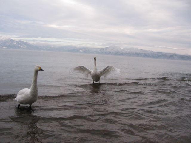 この冬の猪苗代湖は快適