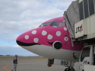 沖縄美ら海水族館とタイアップした特別塗装機ジンベエジェット2号機