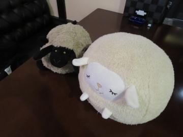 羊さんがソファに居ました。誰かテーブルに