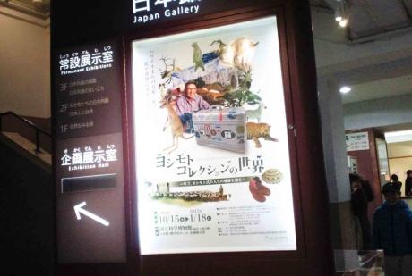 YOSHIMOTO01R.jpg