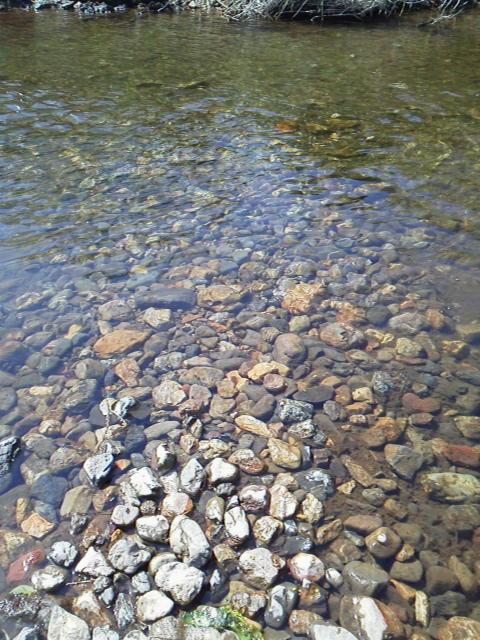 150402川と石