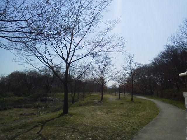 150402ビオトープ遊歩道