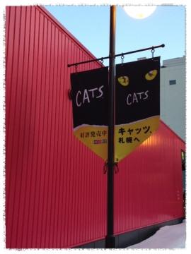 CATS 会場外のフラッグ
