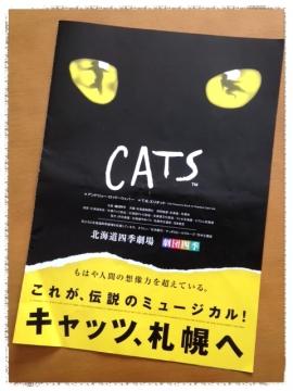 CATS パンフ