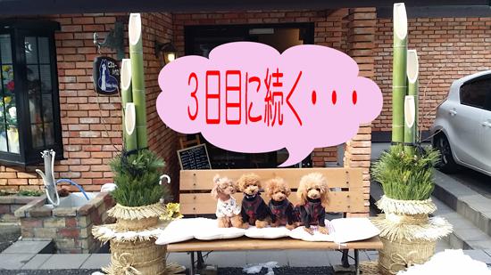 15_2015010815340402b.jpg