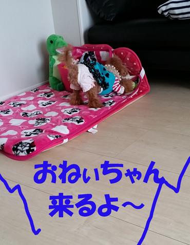 4_201503022122139b6.jpg