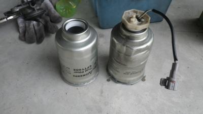 IMGP28170 (8)