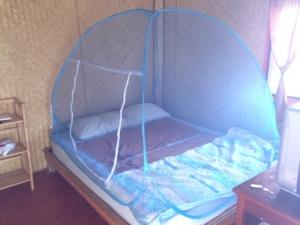 蚊帳設営完了