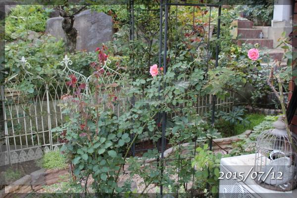 サンセットグロウ 20150712