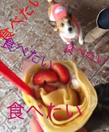 fc2blog_20150321222050353.jpg