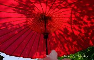 #145  「番傘」